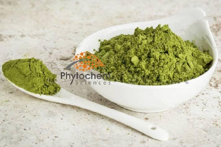 Organic Moringa Leaf Extract Powder