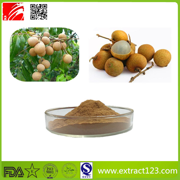High Quality Longan Fruit Extract Powder