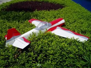 Airplane model(SU-31 40)