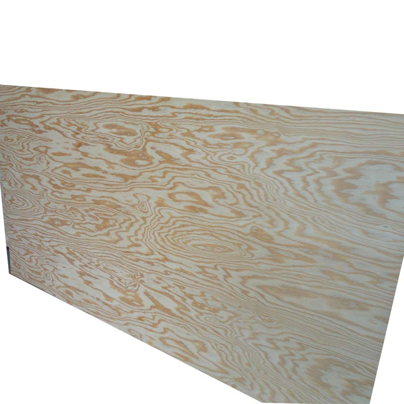18mm larch plywood for India
