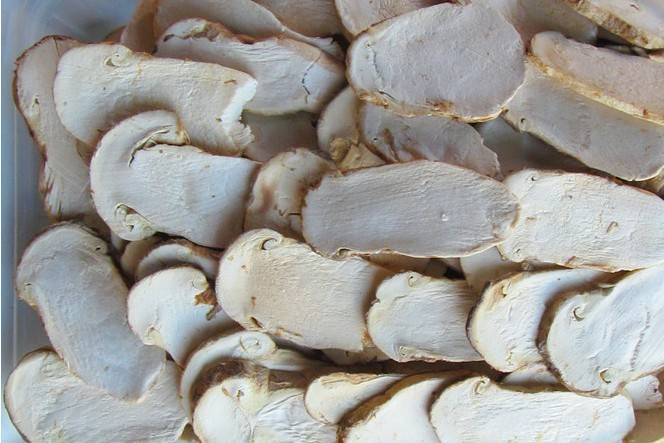 Freeze dried matsutake slice mushroom newly dried