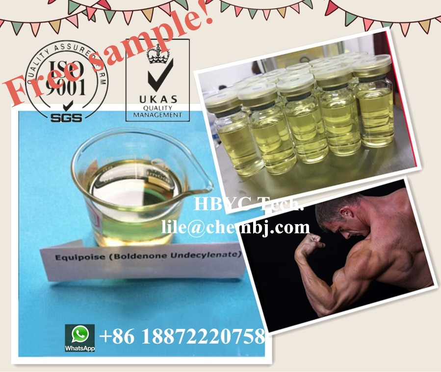 Testosterone Propionate Injection Muscle Building Steroids CAS 57-85-2