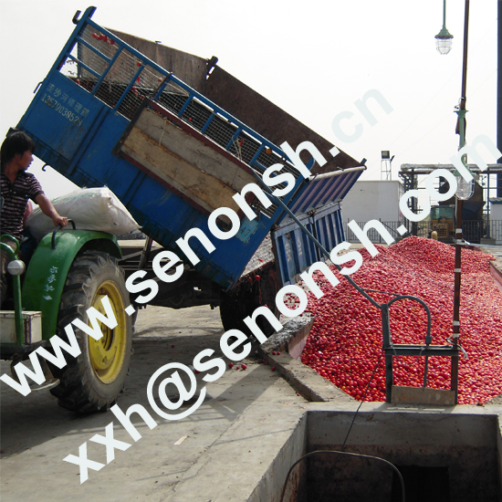 300tons tomato paste production line