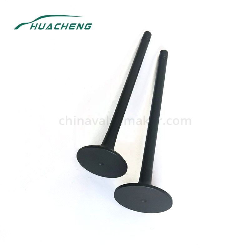 Truck engine intake valve for HOWO