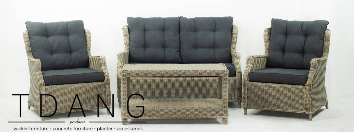 Driago 4 Pieces Deep Seating Group with Cushions (Code TD1002)