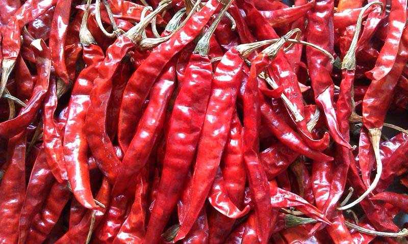 red chilli whole