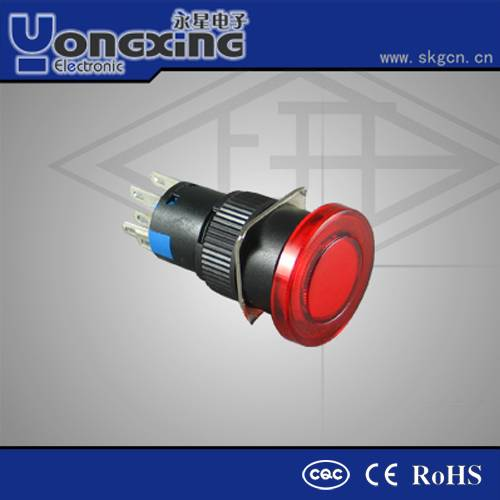 12 volt double pole push-button switch