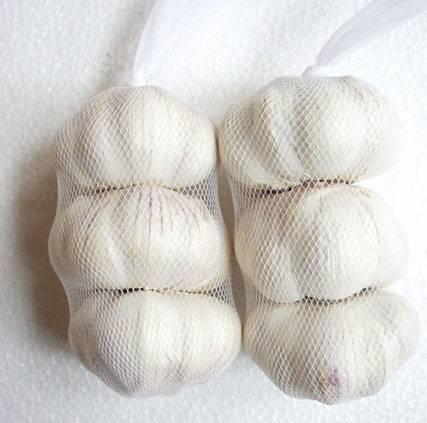 2011 fresh garlics