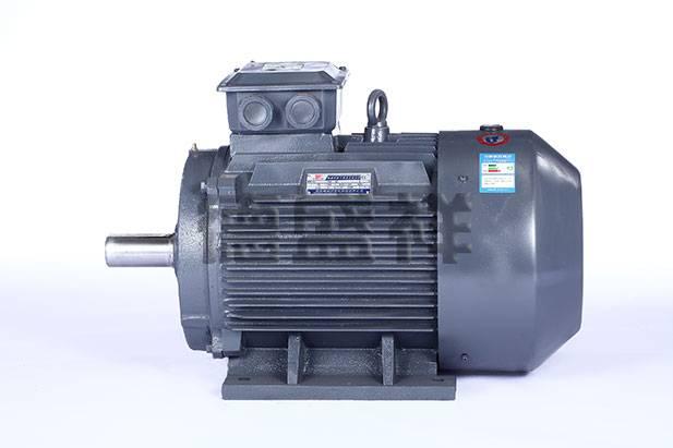 YE3 series (IP55)high efficiency three-phase asynchronous motor