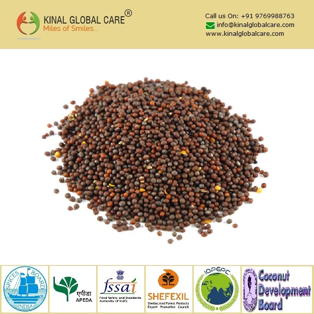 Best Quality Indian Black Mustard Seeds