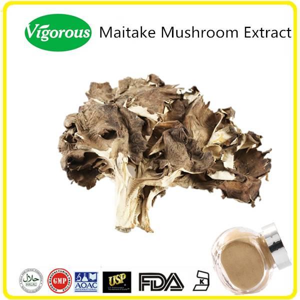 GMP manufacturer natural 30% Polysaccharides wholesale maitake mushroom extract