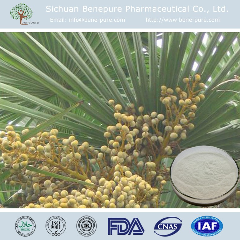 Fatty Acid 25%-45% Saw Palmetto Extract from Sababae serrulatae