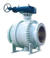 Worm gear fixed ball valve