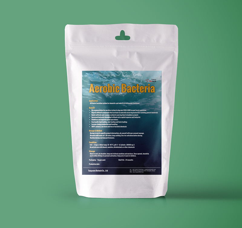 bio products for filamentous bulking troubleshooting in wastewater treatment