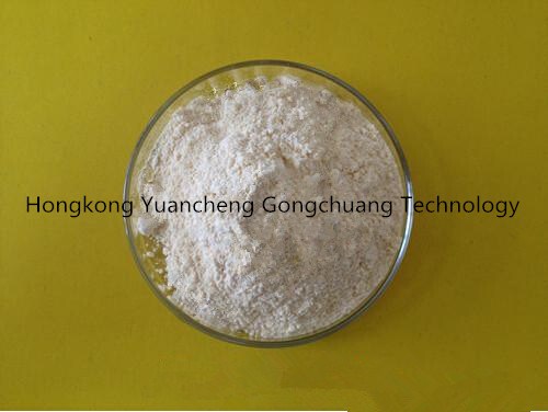 99% High Purity Powder Cortisone Acetate CAS (50-04-4)