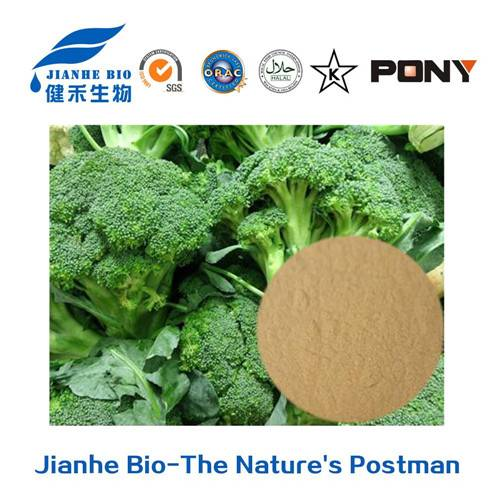 Natural Extract Broccoli Extract