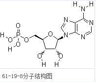 Adenosine monophosphate Free acid CAS 61-19-8