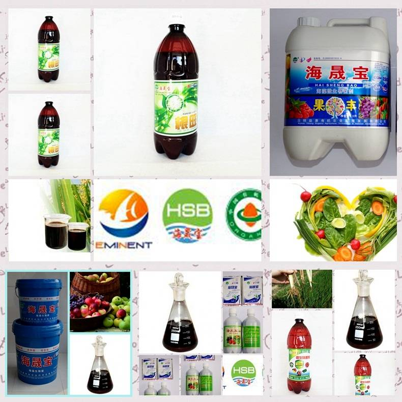 Seaweed bio fertilizer organic fertilizer liquid manure flushable manure
