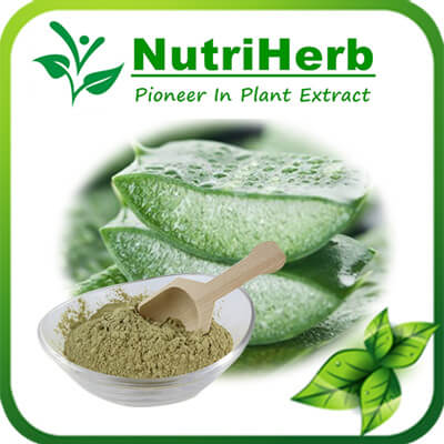 Aloe Vera Freeze Dried Powder/Aloe Vera Spray Dried Powder/Aloe Vera Powder/Aloe powder