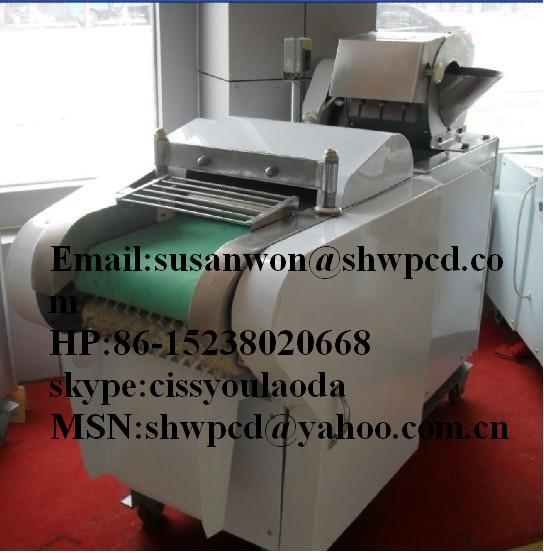 Sale Competitive price stainless steel potato and carrot chips making machine Mobile 0086 1523802066