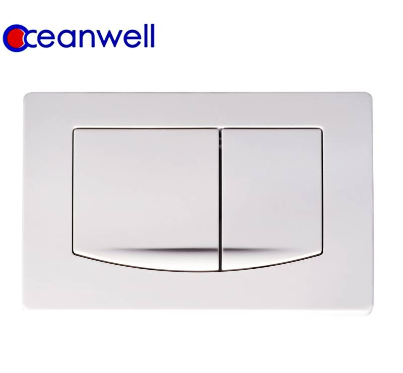 Flush Plate for Concealed Cistern