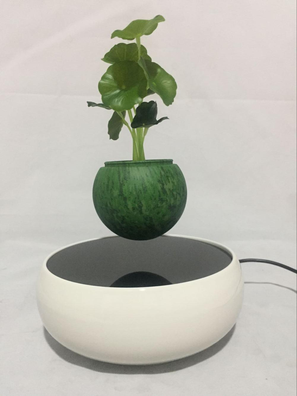customzie magnetic floating leivtating bottom air bonsai trees