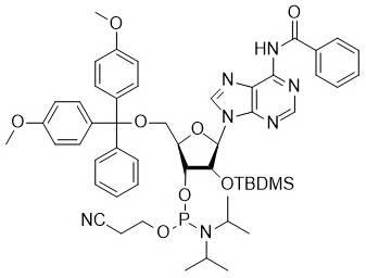 Bz-rA phosphoramidite