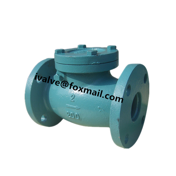Cast Iron ANSI Swing Check Valve