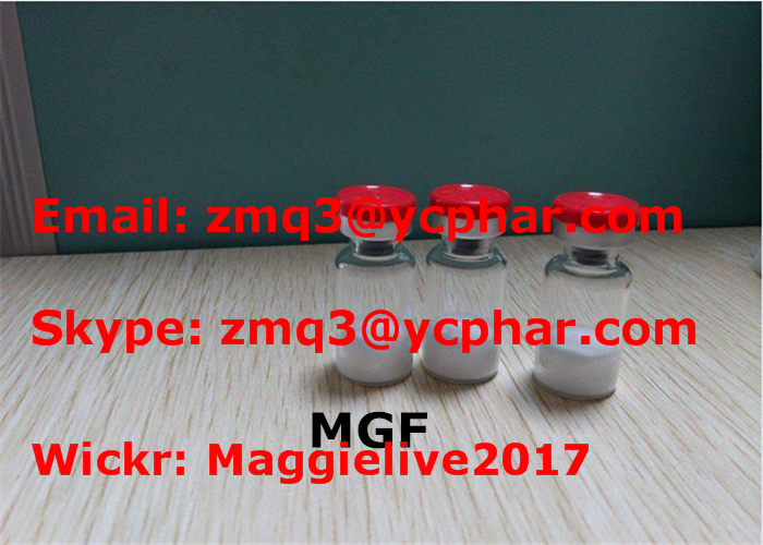 3704-09-4 Fat Burning MGF Peptide , 2mg / Vial Muscle Growth Polypeptide Hormone