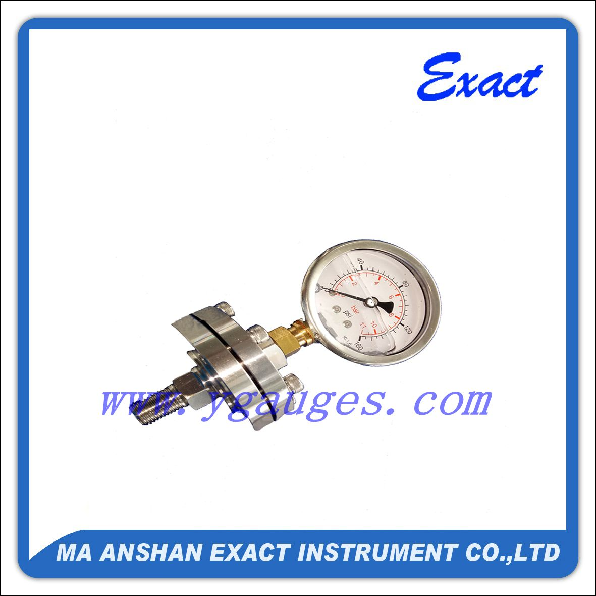 Oiled Gauge with Sanitary Connection