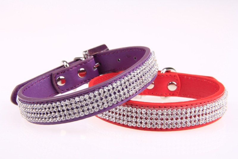 4 rows stud rivet dog collar