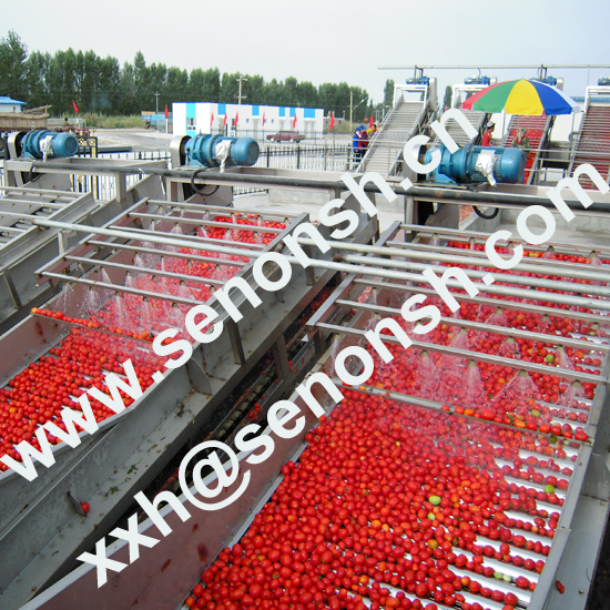 Tomato Paste Processing Line with 850tons treatment capacity