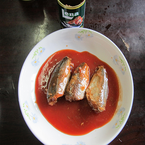 canned mackerel in tomato sauce 50X155g
