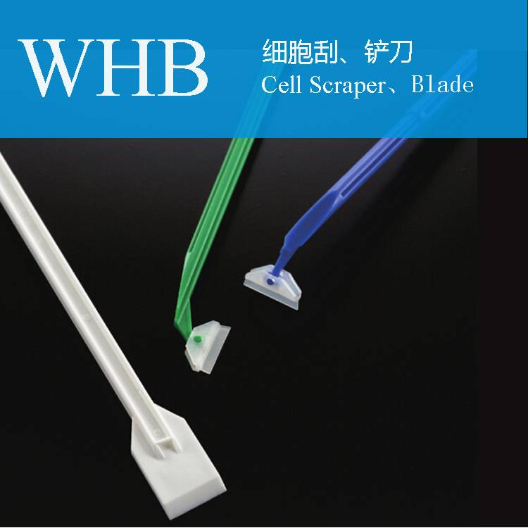 Plastic Sterile Cell Scraper with Flexible Blade Head for Lab