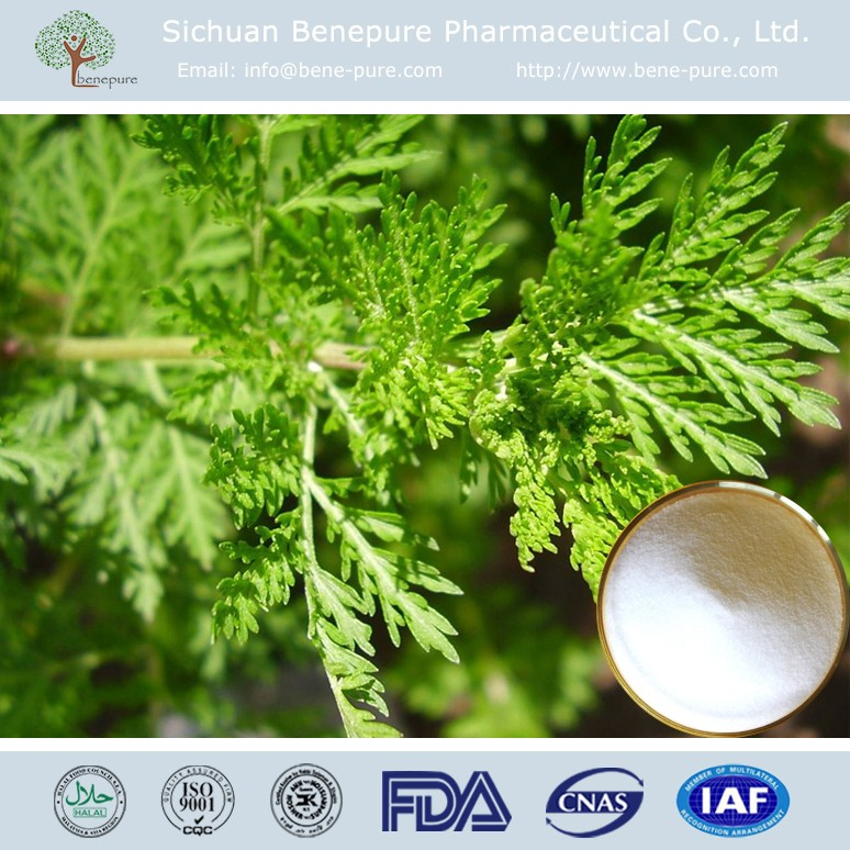 Pharmacautical Artemisinine Plant Extract, Sweet Wormwood Extract Powder