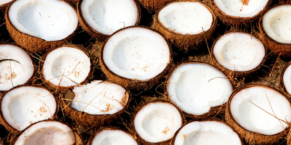 Coconut from Vietnam-A taste from heaven
