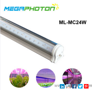 Reliable 24W T8 led growing light tube for multilayer cultivation
