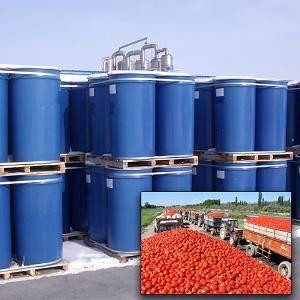 High quality tomato paste,bulk tomato paste,aseptic tomato paste