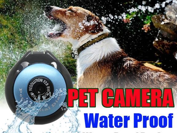 pet digital camera HD 720P waterproof TF card 32G