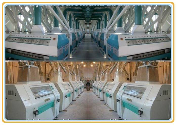 5-500T/24h wheat/corn/cassava automatic milling machines with steel structure