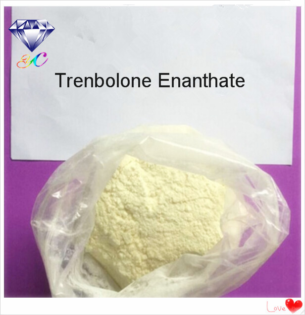 10161-33-8 Parabolan Trenbolone Enanthate Powder Mass Building Steroids