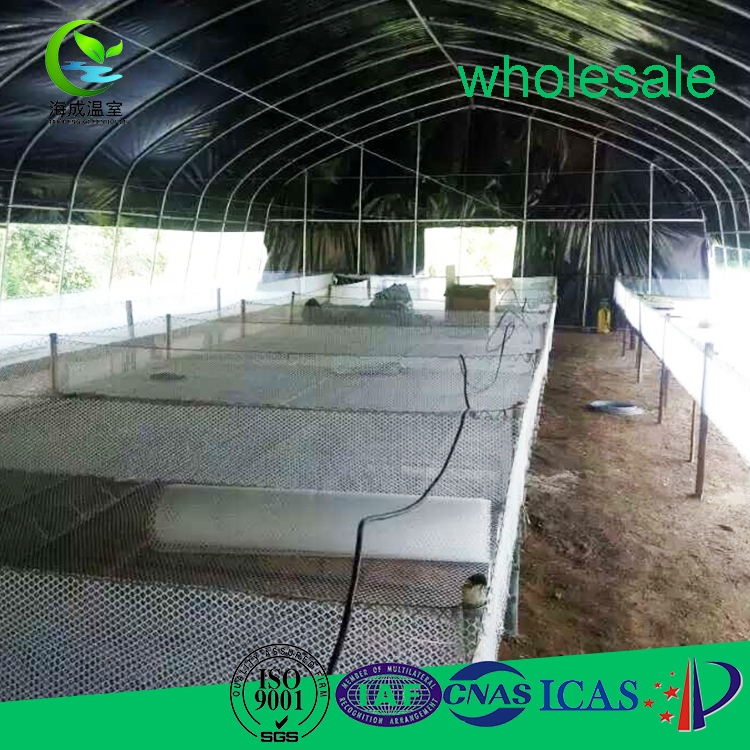 top quality dome single tunnel greenhouse seed