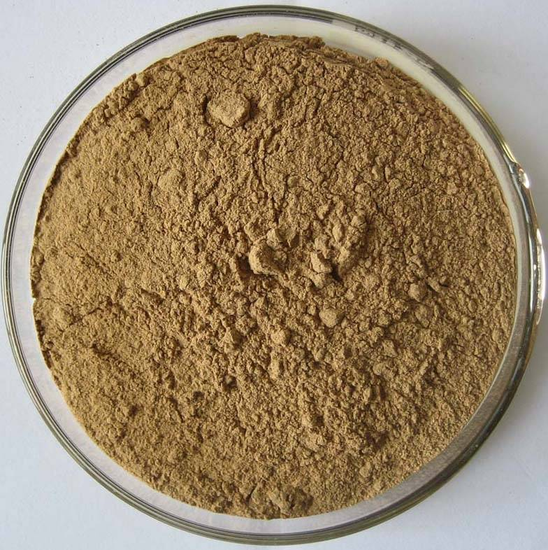 Bilberry Powder Extracts