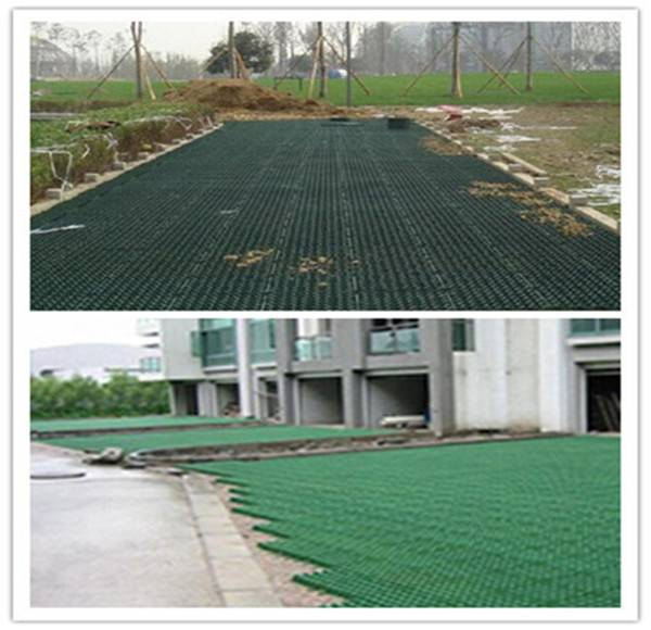 nature planting grass grid