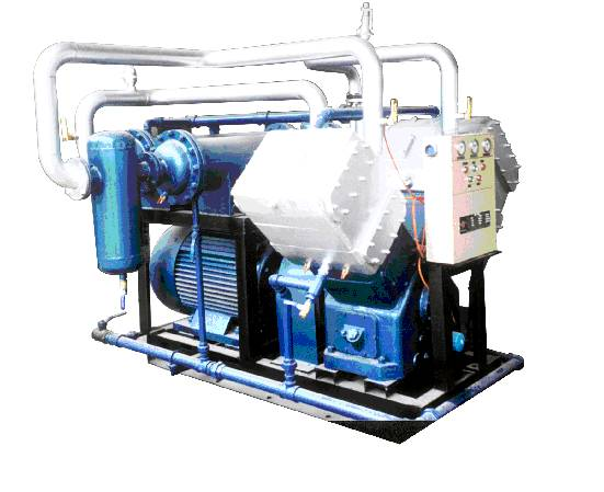 Chloromethane Compressor