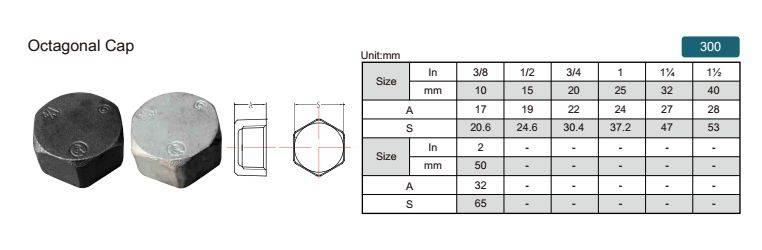 China malleable iron pipe fitting Octagonal Cap-300 with high quality and proper price