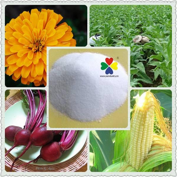 Plant Accelerating Agent / Foliar Fertilizer Triacontanol 90%TC 1.5%EP