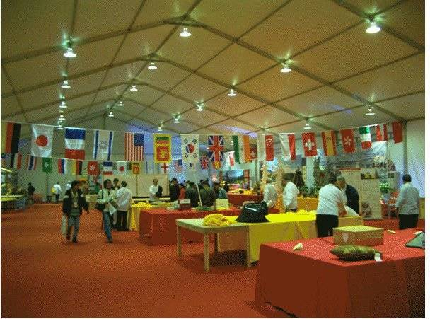 big comfortable party tent for exhibition