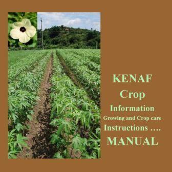 Kenaf Growing & Care Instruction Manual