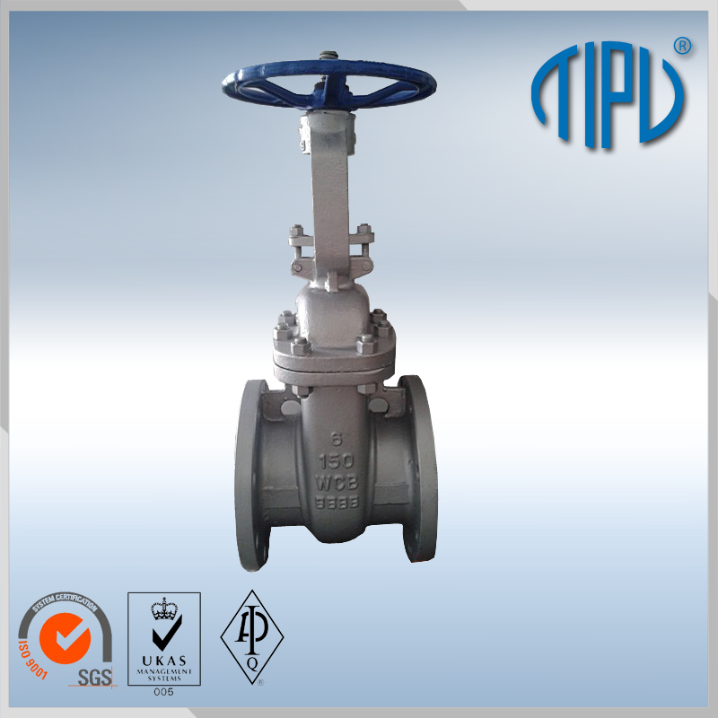 WCB/WCC/WC1 flanged gate valve